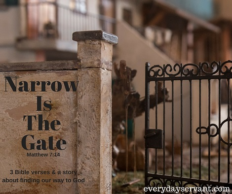 Narrow Is The Gate